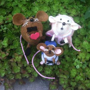Amazing mouse felted family